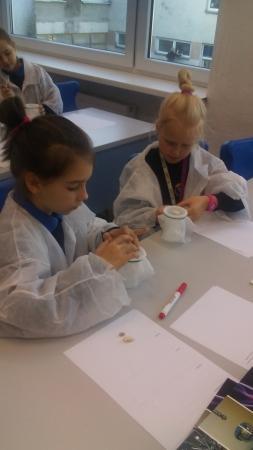 Zajęcia pozalekcyjne- młody odkrywca- zakładanie hodowli fasoli